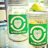 Aloha Grown Square Sticker in green
