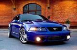 03-04 Mustang Cobra