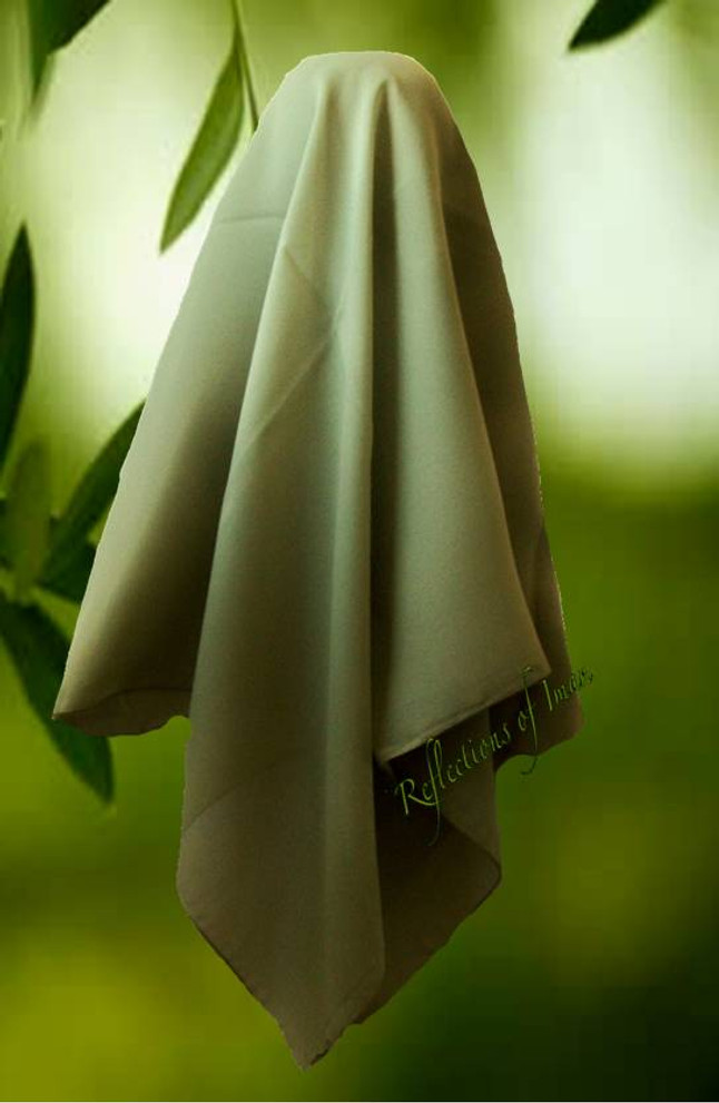 Olive Green Georgette Scarf Style Hijab