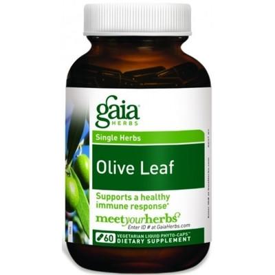 Olive Leaf 60 Caps by Gaia Herbs