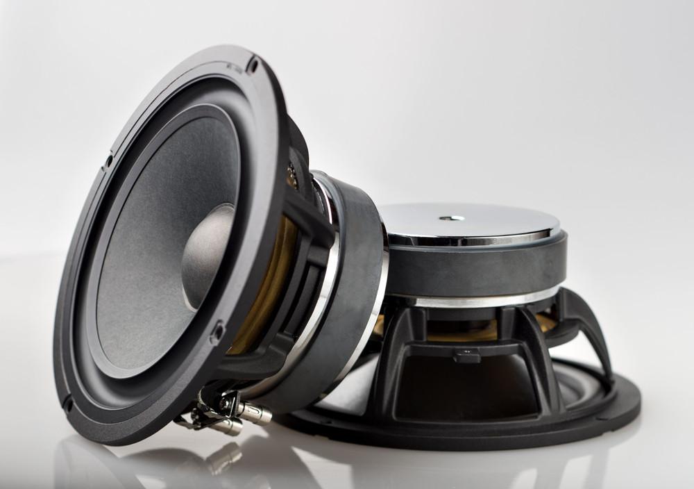 Legatia L65v2 Speaker Set