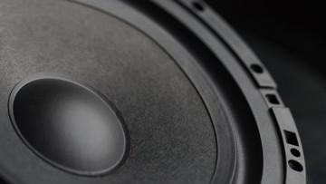 "Unity U51-2 5.25""  2-way Component Speaker System"