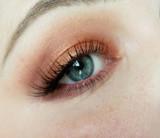 Nude Renaissance Eye Shadow Palette