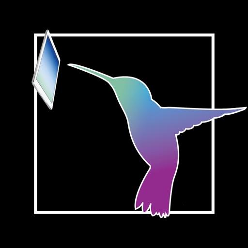 hummingbird-copy.jpg