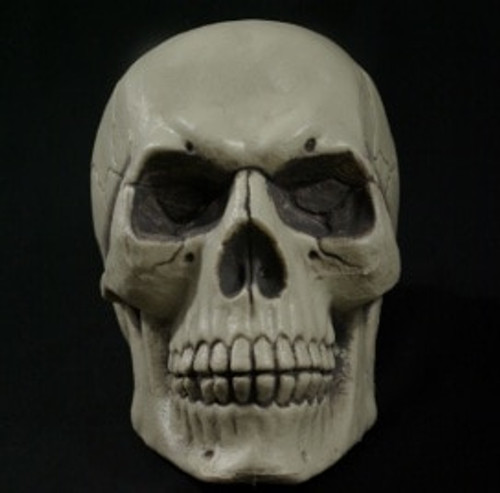 Easy on the Pocket Paul Skull Halloween Prop