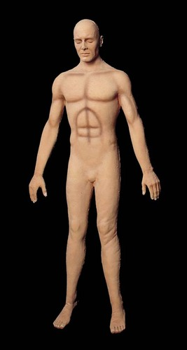 Flex Body Male
