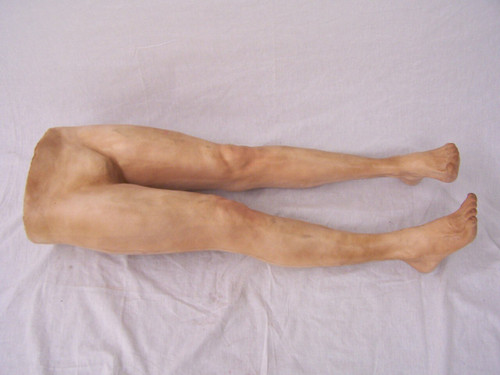 Has Anyone Seen My Legs?