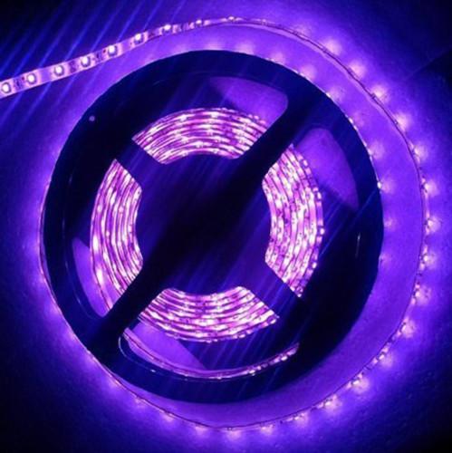 UV Strip Light