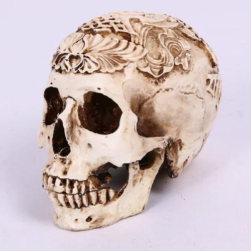 Decorative White Resin Model Skull - Escape Room Prop