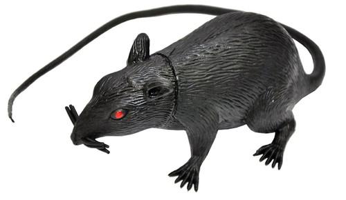 Rat Friend