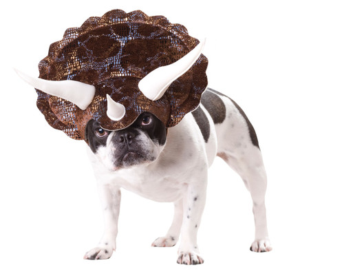 PET TRICERATOPS SMALL