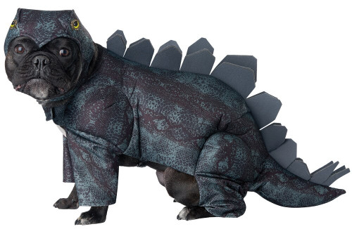 STEGOSAURUS DOG MD