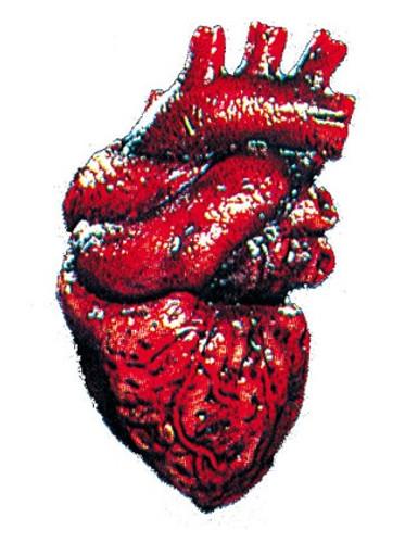 Heart Latex Halloween Prop