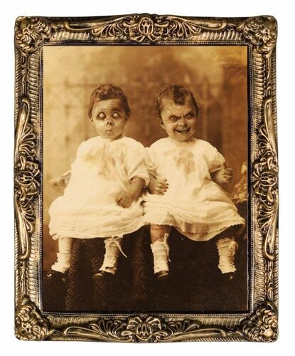 Twins Holographic Portrait