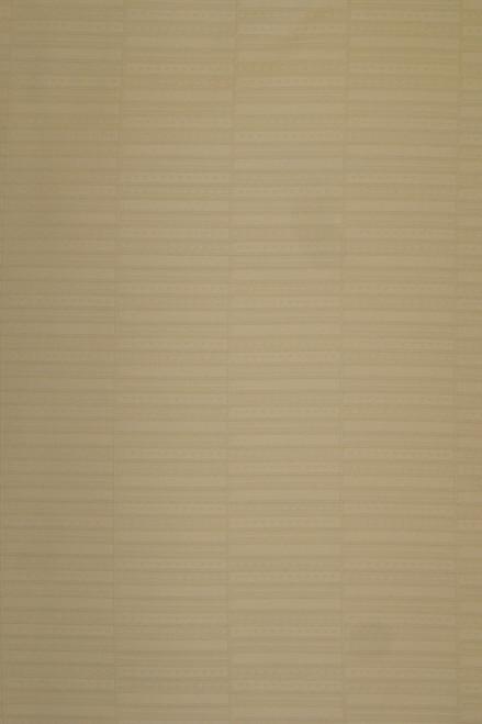 Top Quality Swiss Voile (Atiku) - Beige - SV14