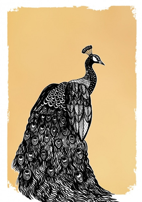 Card - Drawn in Gold Peacock