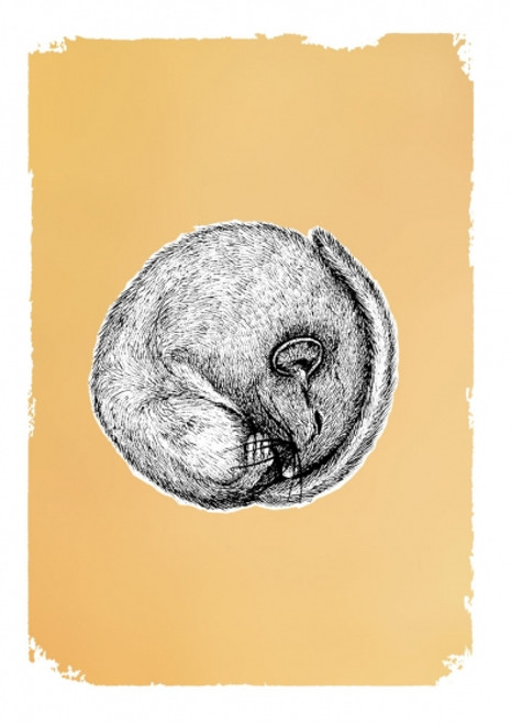 Card - Drawn in Gold Dormouse