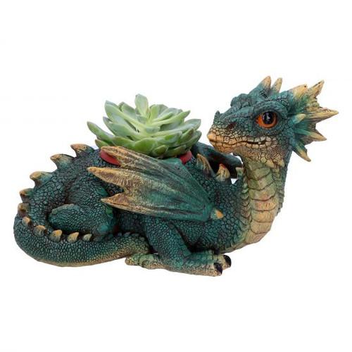 Dragon Plant Pot : Garden Protector