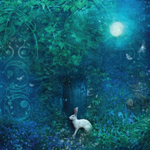 Card - Midnight in the Secret Garden