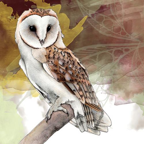 Card - Owl