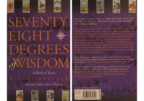 Book - 78 Degrees of Wisdom by Rachel Pollock