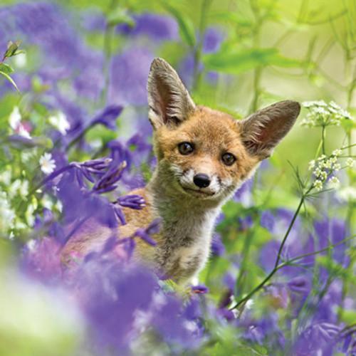 Card - Fox Cub in Bluebells