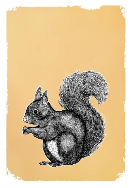Card - Drawn in Gold Squirrel