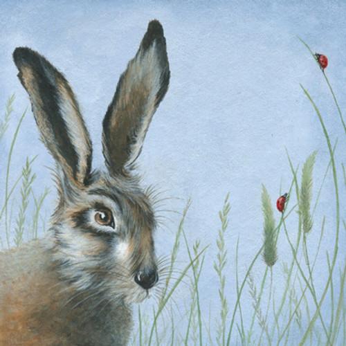 Card - Hare & Ladybird