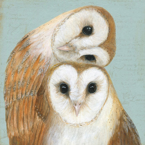 Card - Two Barn Owls