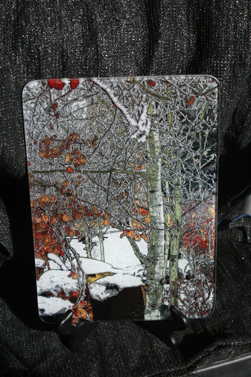 Winter Aspen Glass Cutting Board -  7.75in x 10.75in
