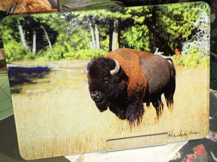 Bison Glass Cutting Board - 7.75in  x 10.75in