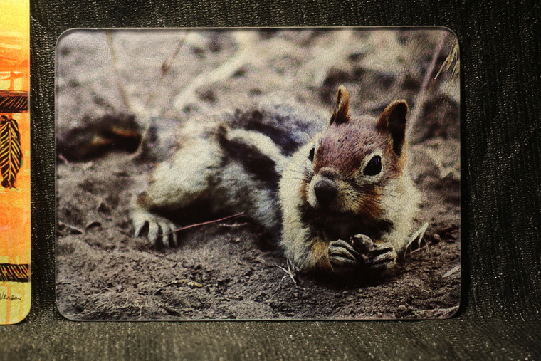 Golden Mantled Ground Squirrel Glass Cutting Board -  7.75in x 10.75in