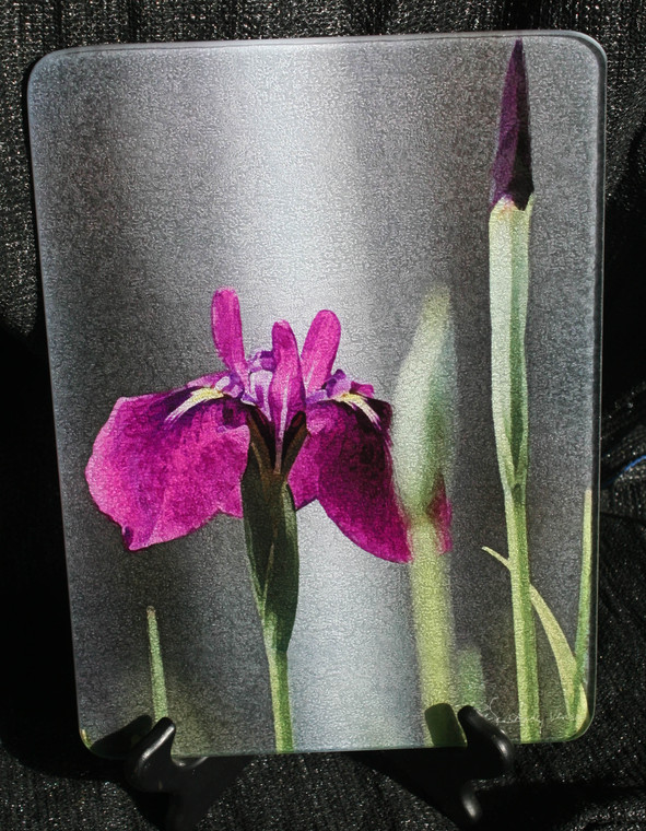 Iris Laevigata Glass Cutting Board - 7.75in  x 10.75in