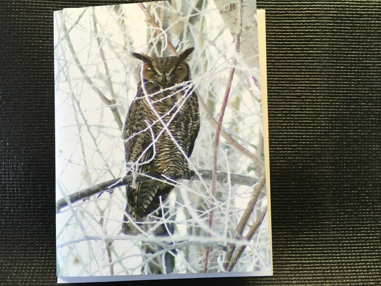 10 Great Horned Owl Blank Note Cards