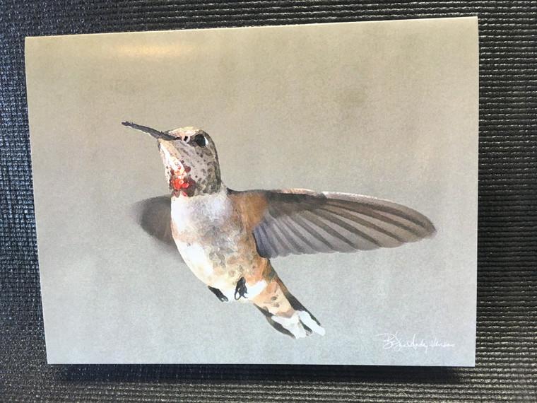 10 Rufous Hummingbird Blank Note Cards