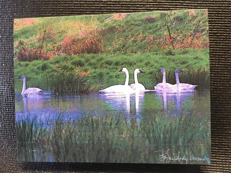 10 Swan Blank Note Cards
