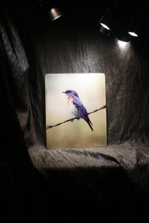 Bluebird Glass Cutting Board - 7.75in  x 10.75in