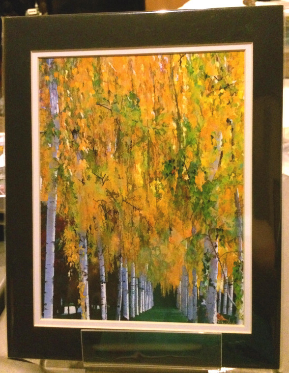 Fall Birch- Matted Print 11 x 14