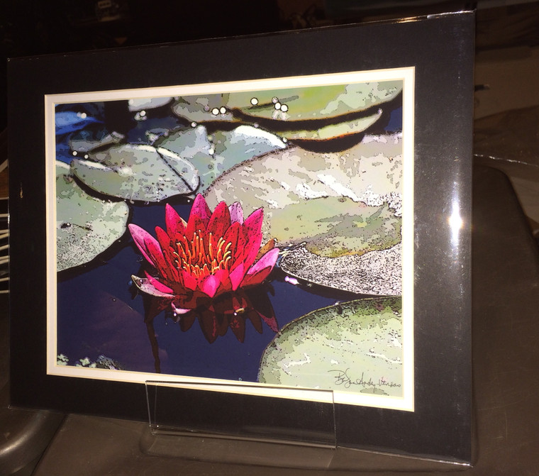 Red Lily - Matted Print 11 x 14