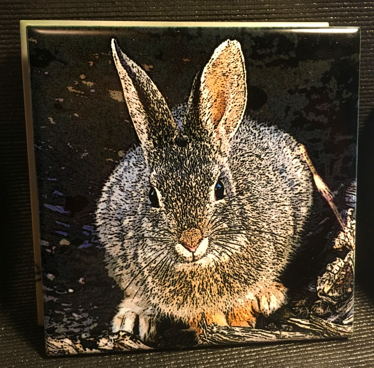 Ceramic Tile - Mountain Cottontail 4.25 In x 4.25 In