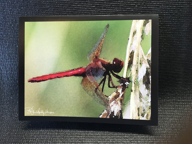 10 Red Dragonfly Blank Note Cards