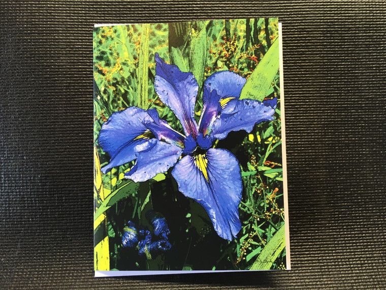 10 Blue Iris  Blank Note Card