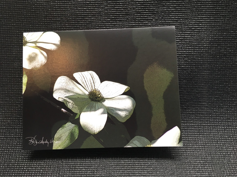 10 Dogwood Blank Note cards
