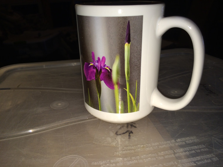 Iris Laevigata Large Coffee Mug 15 oz
