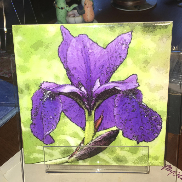 Decorative Tile - Purple Iris 8 in x 8 in