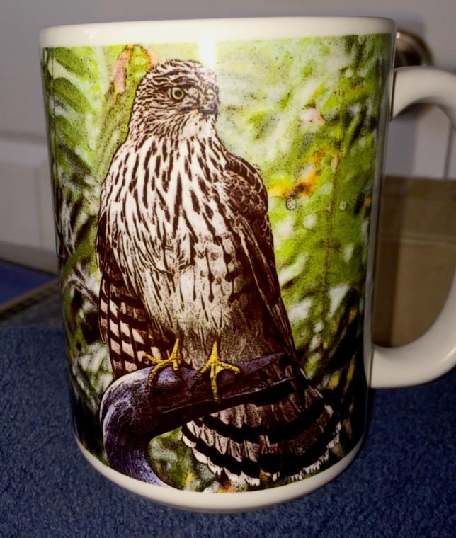 Coopers Hawk Large Coffee Mug 15 Oz