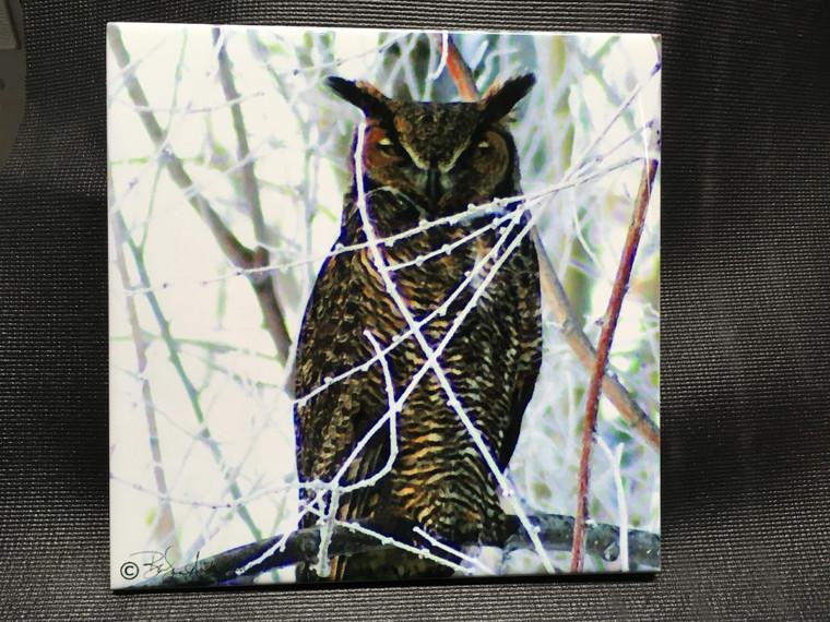 Decorative Tile - Owl 8 in x 8 in