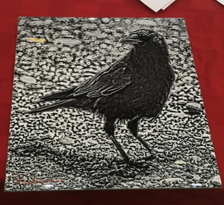 Decorative Tile - Black & White Crow 8 in x 8 in