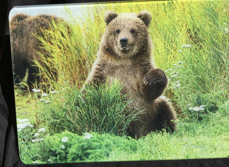 Little Bear Glass Cutting Board -  7.75in x 10.75in