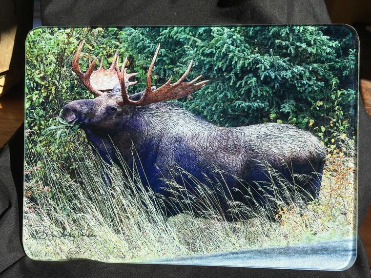 Bull Moose Glass Cutting Board -  7.75in x 10.75in